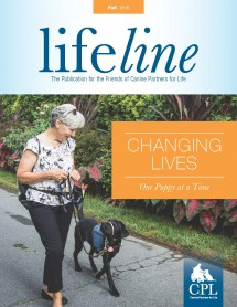 fall-2016-lifeline-cover