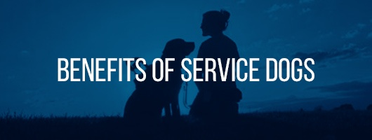 Benefits of Service Dogs
