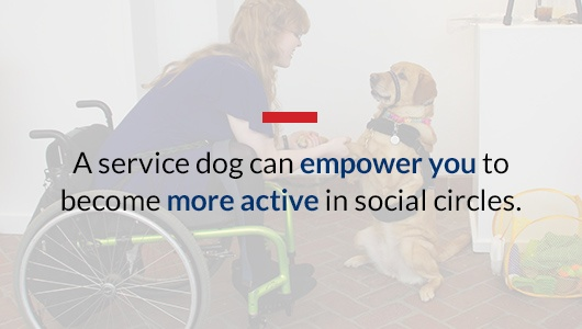 Service Dog Benefits
