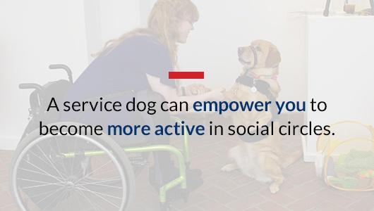 Service Dog Benefits