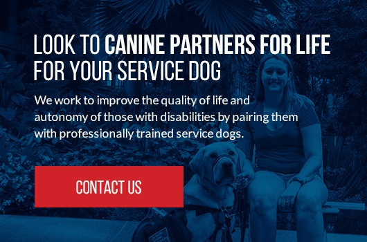 Contact CPL for Service Dog
