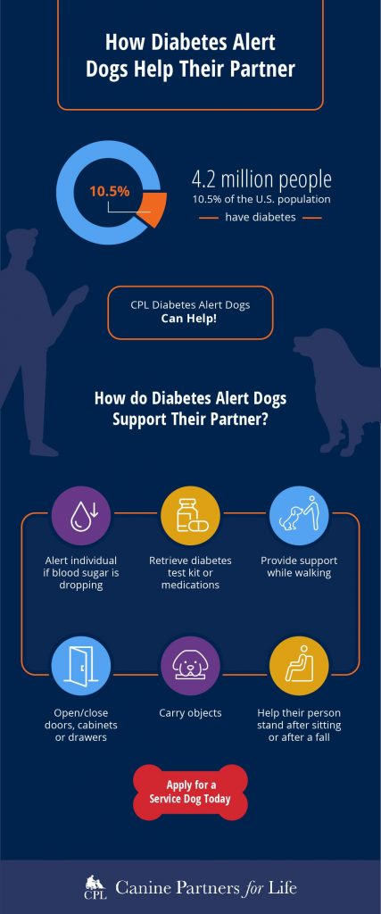 How Diabetes Alert Dogs Help Their Partner